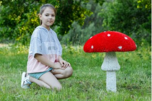 Топиари гриб мухомор стройный, большой - газон ECO