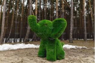 Топиари слоник малыш - газон Premium
