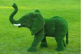 Топиари слон африканский - газон Eco