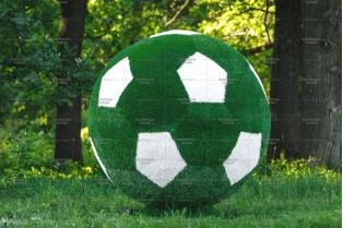 Топиари футбольный мяч - газон Eco