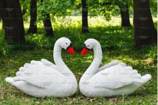 Топиари композиция лебеди белые - газон Eco