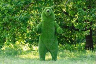 Топиари медведь цирковой - газон Premium