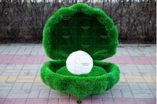 Топиари ракушка - газон Eco Green